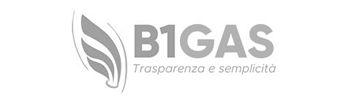 b1gas